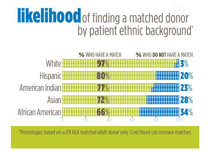 bone marrow ethnic donors